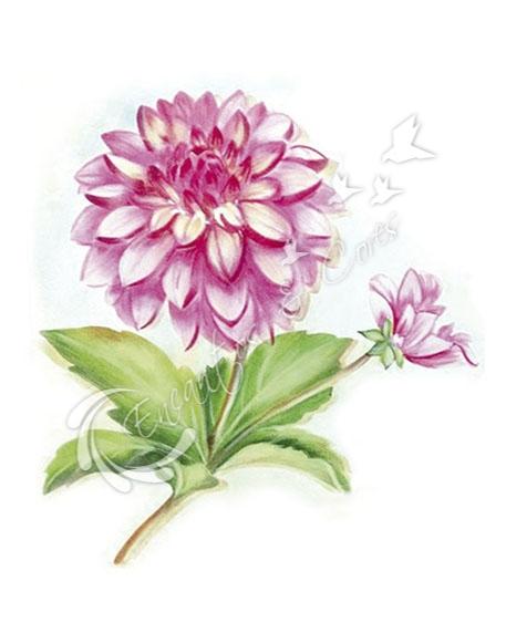 stencil litoarte sobreposi o st 230 flor d lia encantos e cores. Black Bedroom Furniture Sets. Home Design Ideas