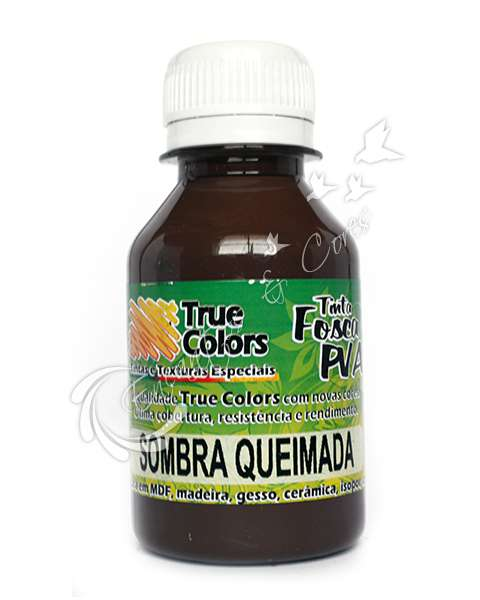 TINTA PVA FOSCA TRUE COLORS SOMBRA QUEIMADA 100ML